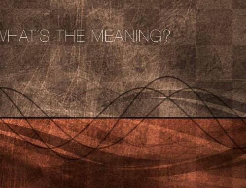 """Vi släpper första singeln """"What's The Meaning?"""""""