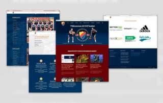 DIF Basket Webbplats